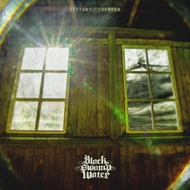 BLACK SWAMP WATER -  Distant Thunder (CD)