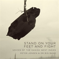 "Peter Jensen & DR Big Band ""Stand On Your Feet And Fight""  (LP)"